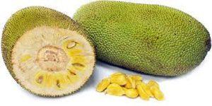 jackfruit 1 0