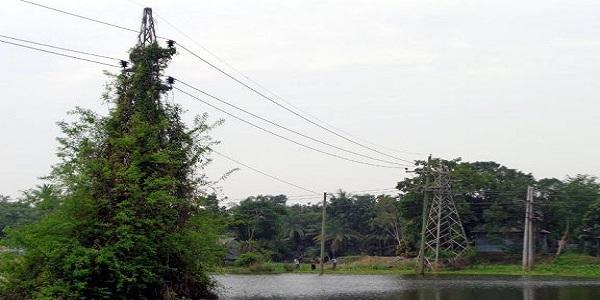 শিবালয়ে বৈদ্যুতিক টাওয়ারে দুর্ঘটনার আশঙ্কা