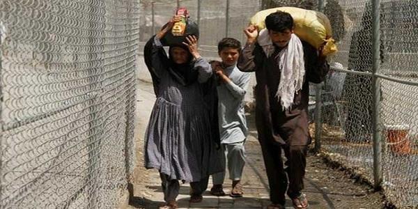 জঙ্গি ঠেকাতে পাকিস্তানের বেড়া নির্মাণ