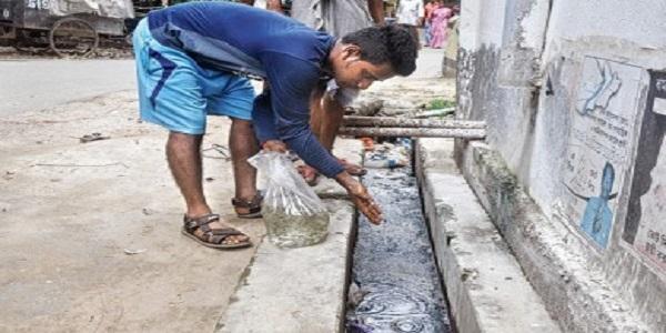 চিকুনগুনিয়া প্রতিরোধে গাপ্পি মাছ