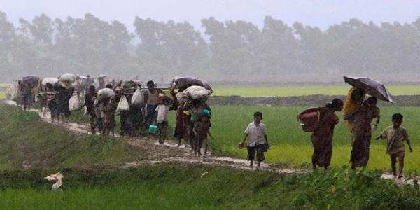 উখিয়ার বালুখালিতে রাখা হবে রোহিঙ্গাদের