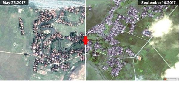 রোহিঙ্গাদের ২১৪টি গ্রাম ধ্বংস: এইচআরডব্লিউ