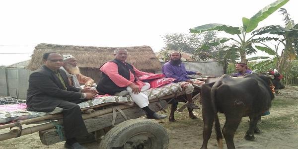 মহিষের গাড়িতে ঘুরলেন এমপি মোতাহার